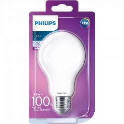 Ampoules Led 100W E27